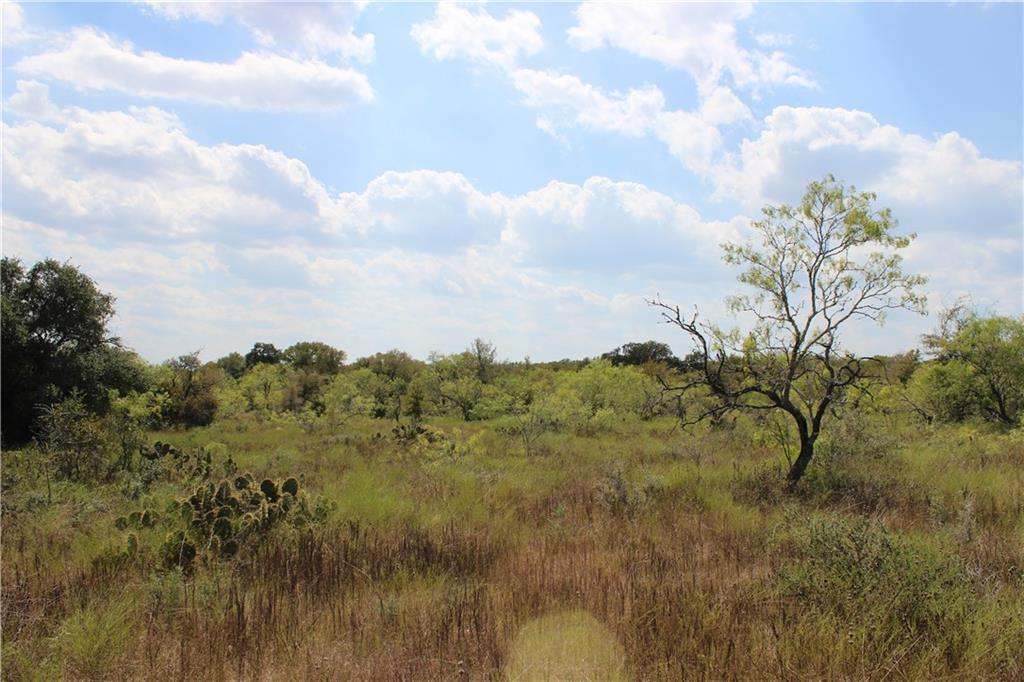 Restrictions: Unknown Beautiful rolling heavily wooded property with Live Oak, Post Oak, Mesquite and other native browse and grasses and FM 2814 frontage for access. This place is located between Houston and San Antonio just Southeast of Waelder near the towns of Gonzales and Flatonia in Eastern Gonzales County. This tract could make a nice building site or recreational property. Native wildlife in the area include Whitetail deer, turkey and feral hogs. The property has a view of the surrounding country side to the South.