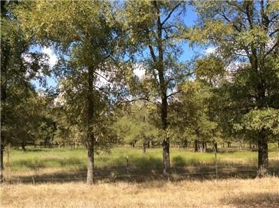 20 beautiful wooded ac. for your new homesite or weekend getaway property! Mostly wooded w/elm groves, oak, & cedar trees. High hill on the back of land for privacy & a secluded home site. Grassy Creek through property listed as minimal flood plain on FEMA map. Tract has drainage areas for future plans in building pond/small lake. Deer, turkey, hog, & other wildlife species. Restriction allowing only site built homes will be added at closing. Water & electricity avail in the area. Minerals negotiable.Restrictions: Yes