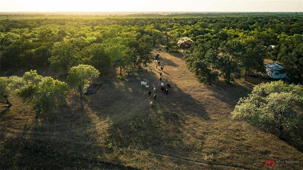 Located in the heart of Gonzales County in the community of Wrightsboro,Texas, the 512.5 acre Rockin V Ranch embodies the true meaning of a recreational Texas Ranch! Mature oaks, pecans, and elms  coupled with south Texas brush , 4 stock ponds, 2 wet weather creeks, and great native grasses allows the property to check all the boxes from a grazing and hunting perspective. Complete with an 1,800 sqft barn and a 540sqft camp.Restrictions: Unknown