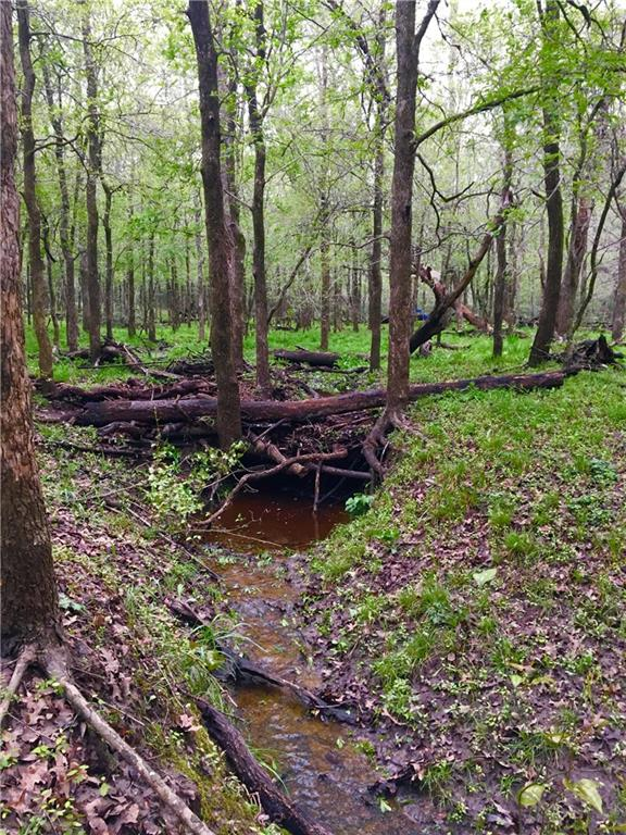 Sportsman's paradise! Come experience the peaceful seclusion of this wildlife exempt property. An intermittent creek runs among the beautiful Oak, Elm, One beautiful Pine and Cedar trees making it an ideal setting for wildlife. Property has electric and water well. Partial 100 yr floodplain. 