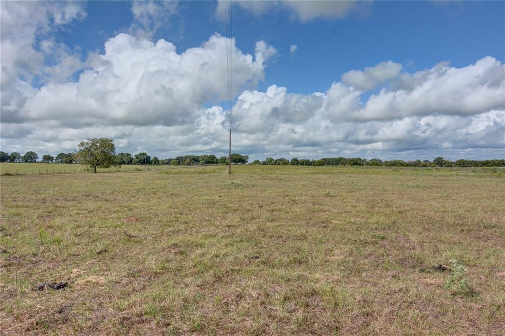 Country Living and Relaxing! 20+/- acre tract in the process of being surveyed from the parent 35+/- acre tract. Ag Exempt! Prime property to build your dream home, grow a garden, run some cattle, whatever your country or hobby farm dream may be, this land is ready! ***Buyer to fence division line***Full package listing available under MLS#7354073***Guest Accommodations: Yes Restrictions: Yes