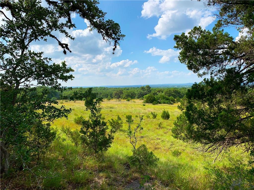 8 CR 208 (Odiorne Rd.), Blanco, Texas 78636, ,Farm,For Sale,CR 208 (Odiorne Rd.),9745958
