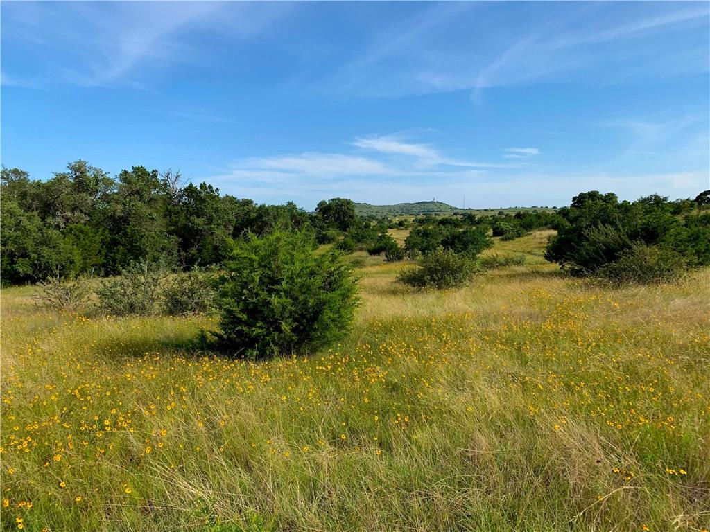 This spectacular 11.44 acres has both the convenience of being close to Johnson City & the privacy of the country life. Property offers some amazing Hill Country views. Amenities include a newly paved road to the property and underground electricity. There's no deadline to build, so claim your piece of the Hill Country today. Conveniently located in the heart of the Texas Hill Country, offering near to wineries, parks, rivers, shopping, less than an hour  from downtown Austin. Reasonable Restrictions.Restrictions: Yes