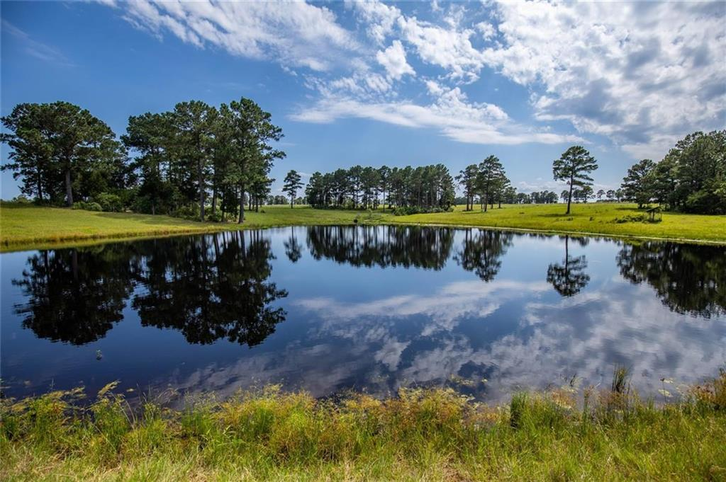 Towering Pines Ranch is a tremendous agricultural/recreational property with rolling topography, towering pines and oaks, spacious pastures, long-range views, and picturesque lakes all combine to make this a truly majestic location to build a forever home. This secluded gem is a rare find just 20 minutes from Bastrop and Smithville.