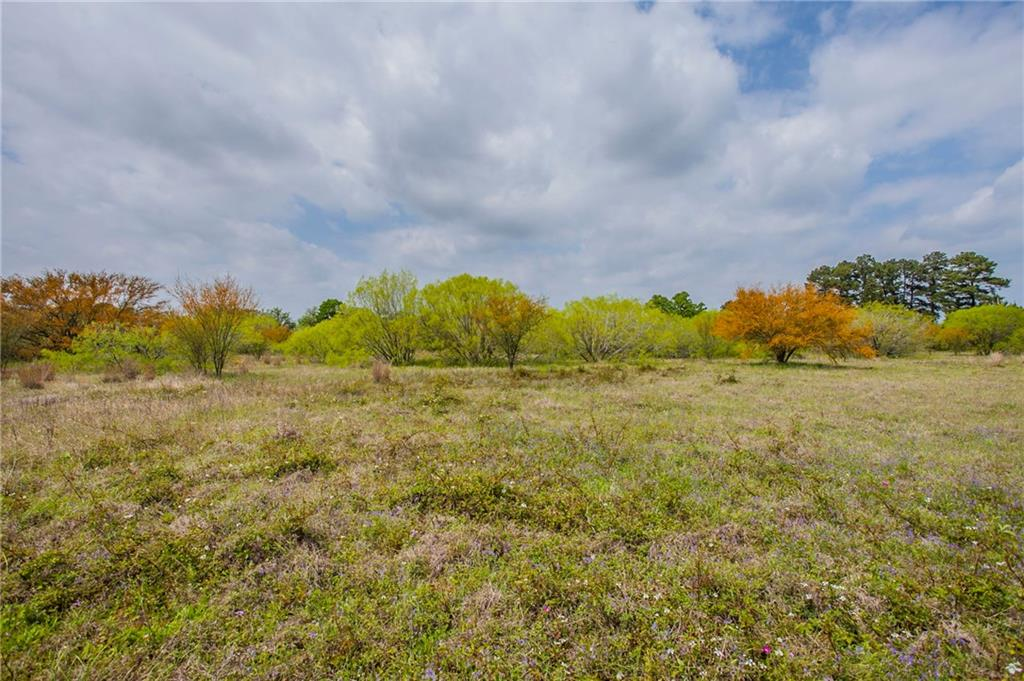 Pristine 5 acre tract, minimum restrictions - do as you please! Perfect for barndominium, tiny home or RV living. Five miles from Lake Bastrop on a high traffic road.