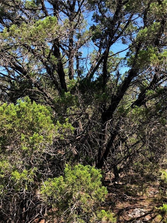 84 Deer Ridge RD, Hays, Texas 78676, ,Land,For Sale,Deer Ridge,9538988
