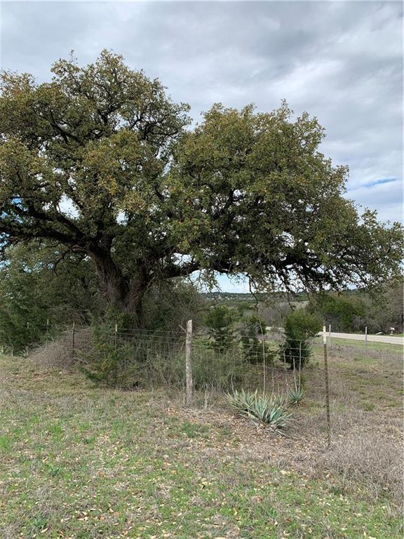 Looking for acreage to build your dream house?  You've found it here!  Frontage on two county roads.  Lots of great trees (oak and cedar)!  Water supplier is City of Gtown.  Florence schools.  No current ag exemption in place.   Mineral rights will convey with the sale.  Seller putting light deed restrictions on the land (no Mobile homes).Restrictions: Yes