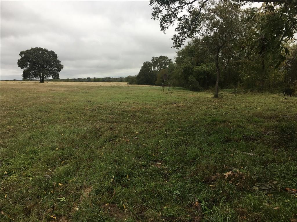 You will find your solitude on this 126 ac. Within 10 min of the BB-Q Capital of Texas, Lockhart. You will have the best of both worlds,  town & the serene country life. With property backing to beautiful Plum Creek you have access to explore.  The property does have a small portion in the flood plain. Large pecan trees are scattered on the property. Cattle pens will convey, hay bales do not. Lockhart ETJ is only on the back Westside portion of property. Plum Creek water district. Developers opportunity.Restrictions: Yes