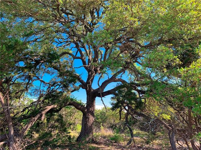 440 Vail River RD, Hays, Texas 78620, ,Land,For Sale,Vail River,7003296