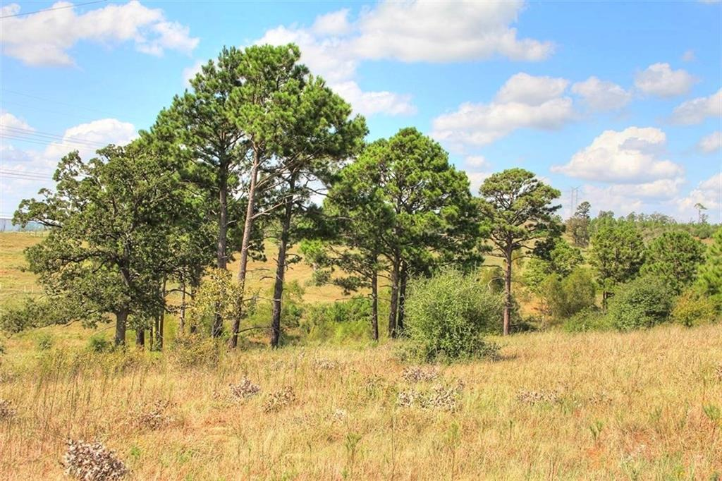 A GREAT PLACE FOR A FAMILY HOME SITE. THIS TRACT HAS EASY ACCESS OFF GOTIER TRACE ROAD, A PAVED COUNTY ROAD. EASY ACCESS TO THE CITIES OF BASTROP & SMITHVILLE. LIVE OAK, POST OAK, PINE, AND OTHER NATIVE TREES ARE SCATTERED ACROSS THE PROPERTY. A SEASONAL CREEK RUNS ACROSS THE FRONT BOUNDARY. LIGHT RESTRICTIONS. NO POA FEES! THIS IS A GREAT HOME SITE AND RECREATIONAL PROPERTY THAT IS CLOSE TO SHOPPING AND THE SCHOOLS. ADDITIONAL ACREAGE AVAILABLE.Restrictions: Yes