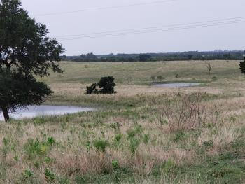 Restrictions: Yes Looking for a place for your cattle and/or to build your country home?   Nice property with five (5) ponds on it!!