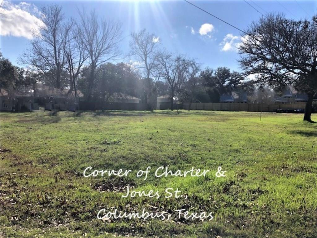 Lot 1 Charter ST, Colorado, Texas 78934, ,Land,For Sale,Charter,7116294