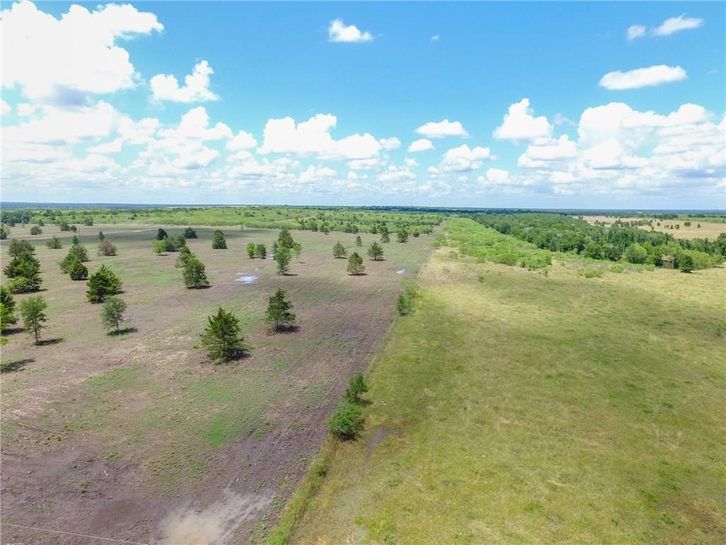 LOT 10 is 19.07 acres and sits just off of FM 1115 on CR 451 (Sparta Field Road) with a 60' deeded access to the property. Seller is installing a limestone driveway on this access.  Seller has contracted to have water and electric installed in the road. Nice elevation changes with trees dotted throughout the lot - some brush left standing as a buffer between this tract and smaller tracts. No Flood Plain. Property has an old water well and windmill (condition not guaranteed). Seller financing availableRestrictions: Unknown