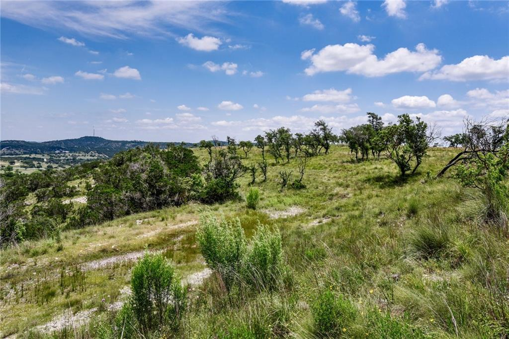 20 acres W Lakeshore DR, Hays, Texas 78620, ,Farm,For Sale,W Lakeshore,9228530