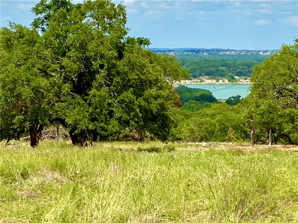 Perfectly & privately located, with private access to walking trails around Lake Georgetown un-developed mix of natural land adjacent to Cimarron Hills, award-winning Jack Nicklaus Signature Golf Course. Hill country and some lake views, oak trees & abundant wildlife w/ tracts of Non-platted raw land of 10+ acres. Deed restrictions & ACC to maintain an upscale private ranch/country club lifestyle. Elec and city water on PropertyRestrictions: Yes