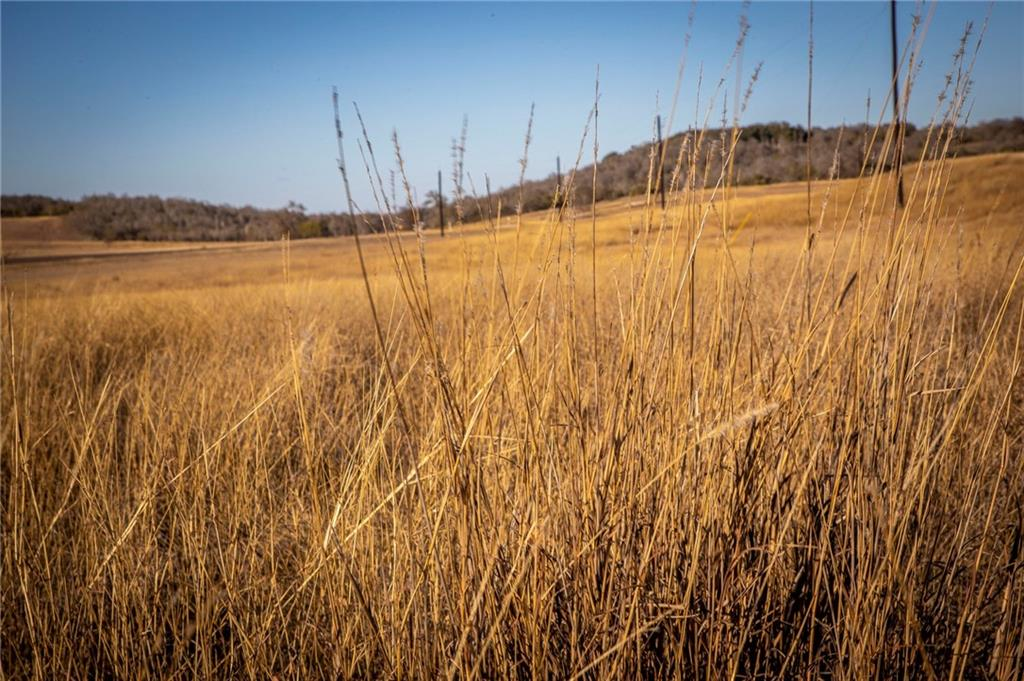 Nestled in the hills of Geronimo, TX, this beautiful home site offers simple country living in Navarro ISD. Large neighboring tracts, hill country views and adequate topography to build a pond. Currently under hay production, suitable for grazing. Horse arena, guest casita and barn, suitable. Ag exempt, abundance of wildlife, private road frontage. Water and electric available. See gated farm and ranch community website for additional information.Restrictions: Yes