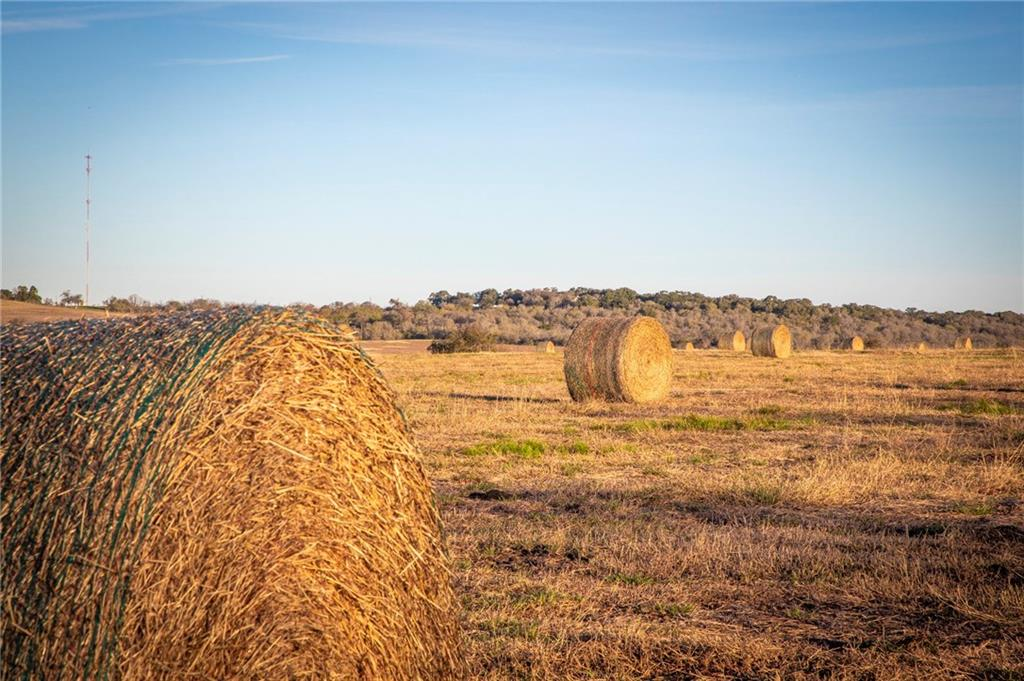 Restrictions: Yes Wide open spaces & lush grazing pastures! This tract is perfect to plant your roots in highly acclaimed Navarro ISD & just 3 miles from schools. Native bluestem grasses & stellar, countryside views set this property apart. Farm & ranch community that offers 29, unique home sites carved from 700 acres. This lot is perfect for horse & cattle lovers with hay production & space to roam. Currently under hay production, large neighboring tracts, abundance of wildlife. Perfect for a homesite, arena and barn.