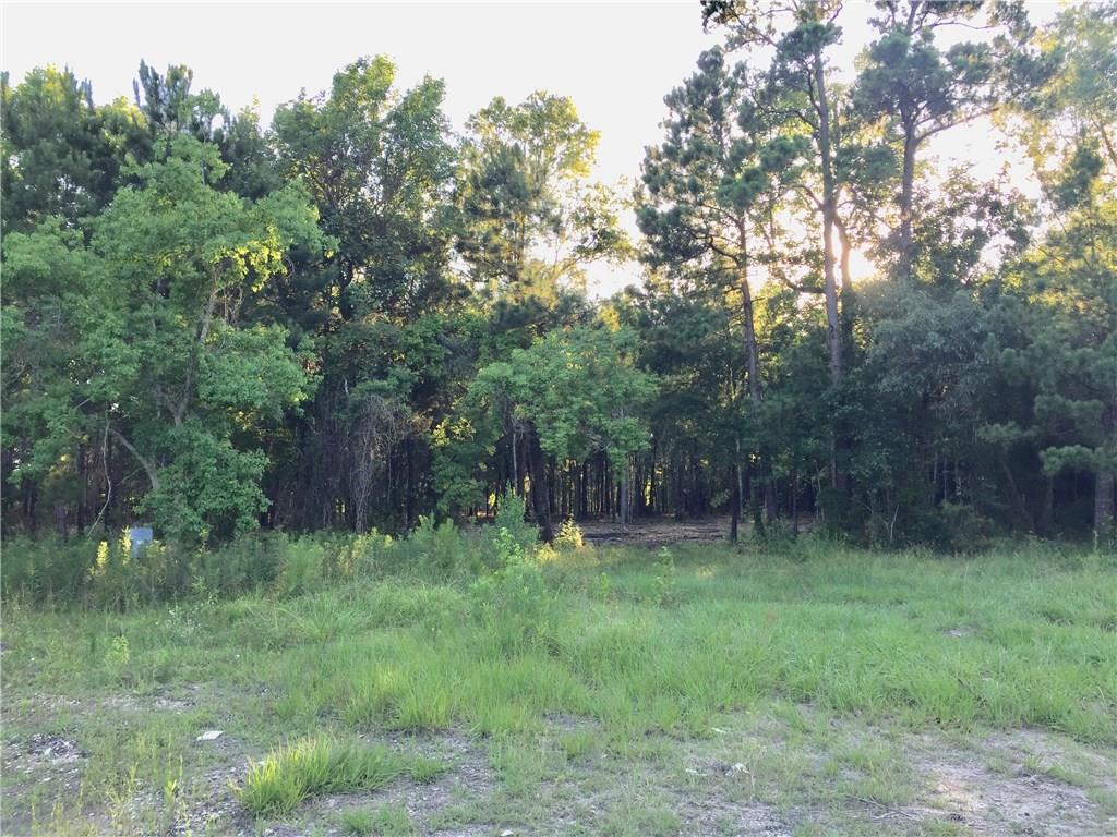 4329 FM 563, Out of State, Texas 77514, ,Land,For Sale,FM 563,5298115