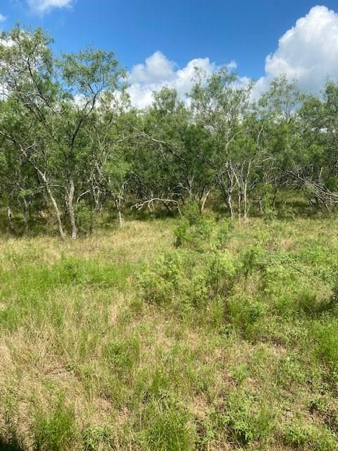 11 ACRES to be surveyed out of A77 Adair, Joseph, ACRES 39.16 Well wooded tract of land with beautiful areas to build your home site! Only 23 miles to airport and 25 miles to Bastrop. GREAT LOCATION! 478 ft. of Bastrop County maintained asphalt road frontage. Easily accessible to FM-812. Currently with Ag exemption and Seller Imposed Restrictions in place.Restrictions: Yes