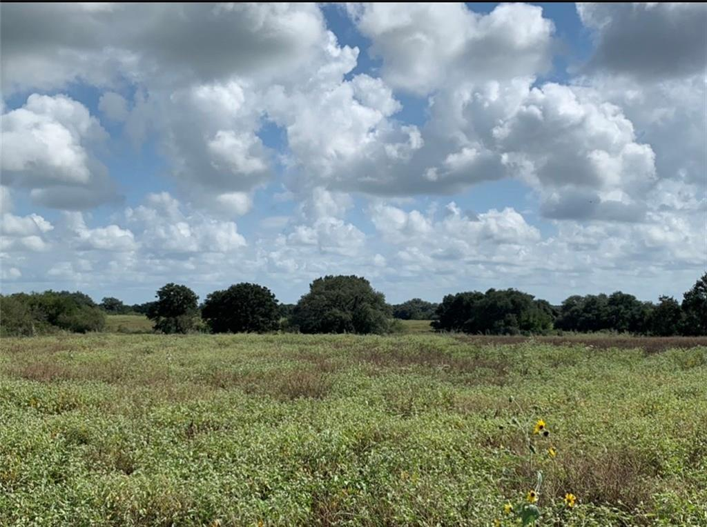 72.207 acres of undeveloped land. There is an abundance of mature oak trees, rolling terrain, two tanks, wet weather creek. Ideal to build your dream house or for recreational use. Water well is @360' deep and CO-OP electricity. Perimeter is fenced. Wildlife that inhabit the property include whitetail deer, hogs, turkeys and doves. Property is being sold together with two parcels #19510 and #7670.