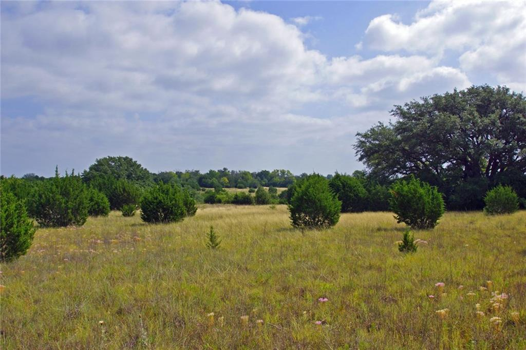 Very private, 167.28 acre hill country hunting/cattle ranch off FM 2657 in Briggs, Burnet County. Attractive sloping and rolling topography with native grass pastures with caliche and black soil. Tree cover consists of cedar, mesquite and oaks, with many being century oaks. There's adequate cover for the abundant wildlife and much more than indicated in the aerial maps. There's a wet weather creek and stock pond on the east side of the property. Electrical is available. Ag exempt and unrestricted.