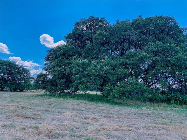120 Annie Oakley Trail, Hays, Texas 78619, ,Land,For Sale,Annie Oakley Trail,9643974