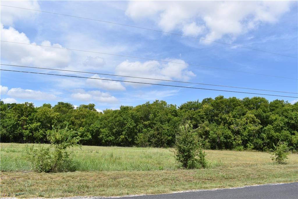 Lot 1 offers a level building site in the front of the property with enough space for a garage or shop. The back of the property has an intermittent creek and timber perfect for relaxing. Oncor power is available at the road and Jonah Water is available at the lot. A septic system will be needed. Light restrictions allow you to design your perfect homestead. This property is ideally located very close to the intersection of 130 and University.Restrictions: Yes
