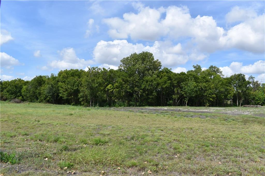 Lot 3 offers a level building site in the front of the property with enough space for a garage or shop. The back of the property has an intermittent creek and timber perfect for relaxing. Oncor power is available at the road and Jonah Water is available at the lot. A septic system will be needed. Light restrictions allow you to design your perfect homestead. This property is ideally located very close to the intersection of 130 and University. Additional lot available next door if you want a bigger tract.Restrictions: Yes