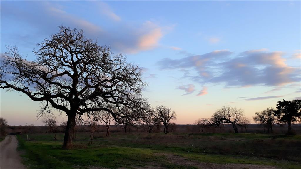 Enjoy the beautiful sunsets on this 12.691 rolling acres with a water meter in Cedar Creek, TX. The front of this land has been cleared of underbrush and has some nice, mature trees on it. Newly subdivided, the owner is allowing up to two homes, site built or DWMHs within five years old. Convenient to Austin, Bastrop, Lockhart, San Marcos, ABIA and COTA. Hershal Ln is a private road. Plenty of space to to make a great homestead.Restrictions: Unknown