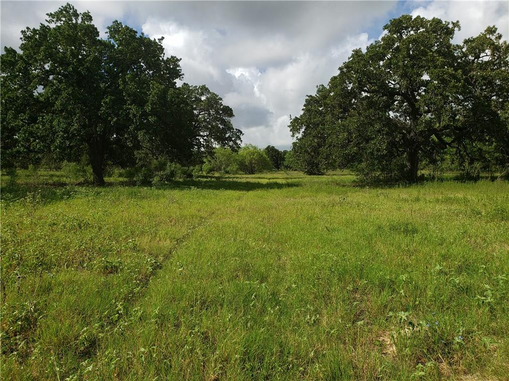 """$875,00 PRICE REDUCTION.  Owner says: """"Sell It"""".  The Majestic Oaks Ranch is the perfect piece of property 15.5 miles South of downtown San Antonio. Excellent hunting ranch or prime for development. Paved access along E. side of Toudouze Rd as well as Timberwood Rd, just South of Loop 1604. Abundant deer, quail, turkeys, dove, hogs with very little hunting pressure for decades. Most of the property in the San Antonio """"ETJ"""". Large growth Live Oak, Post Oak, Hackberry, Hickory, etc...cleared for food plots.FEMA - Unknown Restrictions: Unknown"""