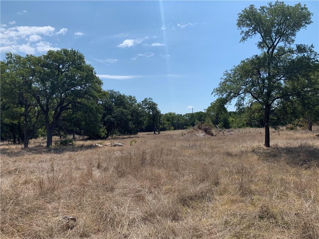 This is the best that Williamson County has to offer. Large and abundant  old Oak trees with most cedar already cleared. There are several building sites with no flood plain issues. Easy access off CR 239 just minutes from Jarrell and 13 minutes to Georgetown. If your client wants trees this is the place. NO commercial, No trailers. Georgetown water and electric available. Cottage or non toxic business allowed . Seller is a license holder .Restrictions: Unknown