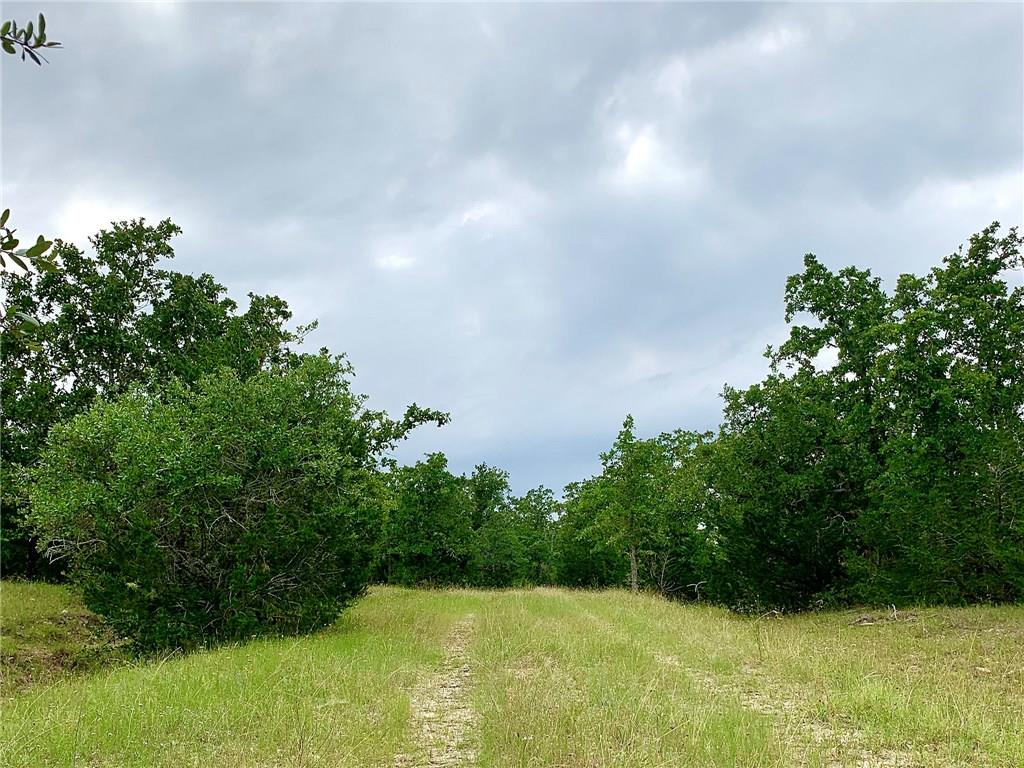 Hunter/sportsman's dream property. 233 acres 1 hour from Austin and 2 hours from Houston. Easy access from I-10, just 24 minutes from Flatonia. This gorgeous property has it all. Live Oak Creek runs across the back of the property providing water and habitat for all sorts of wildlife and game. Nice elevation changes for distant views. And a preferred mix of open grassy spaces and Live Oaks, Post Oaks, Cedar, and Yaupon. AG exempt. Currently leased for cattle.