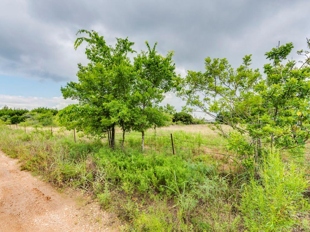 Tract 1 and 2 Kelley LN, Hays, Texas 78610, ,Land,For Sale,Kelley,7659865