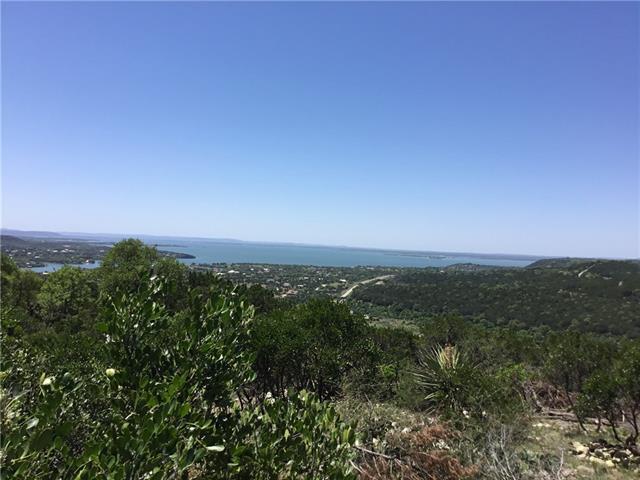 Chestnut Trail Fm 2341, Burnet, Texas 78611, ,Farm,For Sale,Fm 2341,9819173