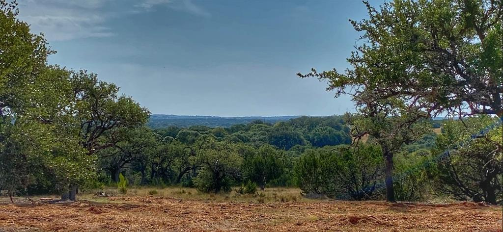 """Rare opportunity to purchase property just a half mile from Luckenbach, Texas! Views, views, and more views! It actually overlooks Luckenbach! Everyone knows how important """"Location"""" is in Real Estate, and this place is located right in the middle of one of the most sought after areas of Texas. Possible homesites abound! It also lends itself to dividing if you are so inclined, and is something the Sellers will consider as well.FEMA - Unknown"""