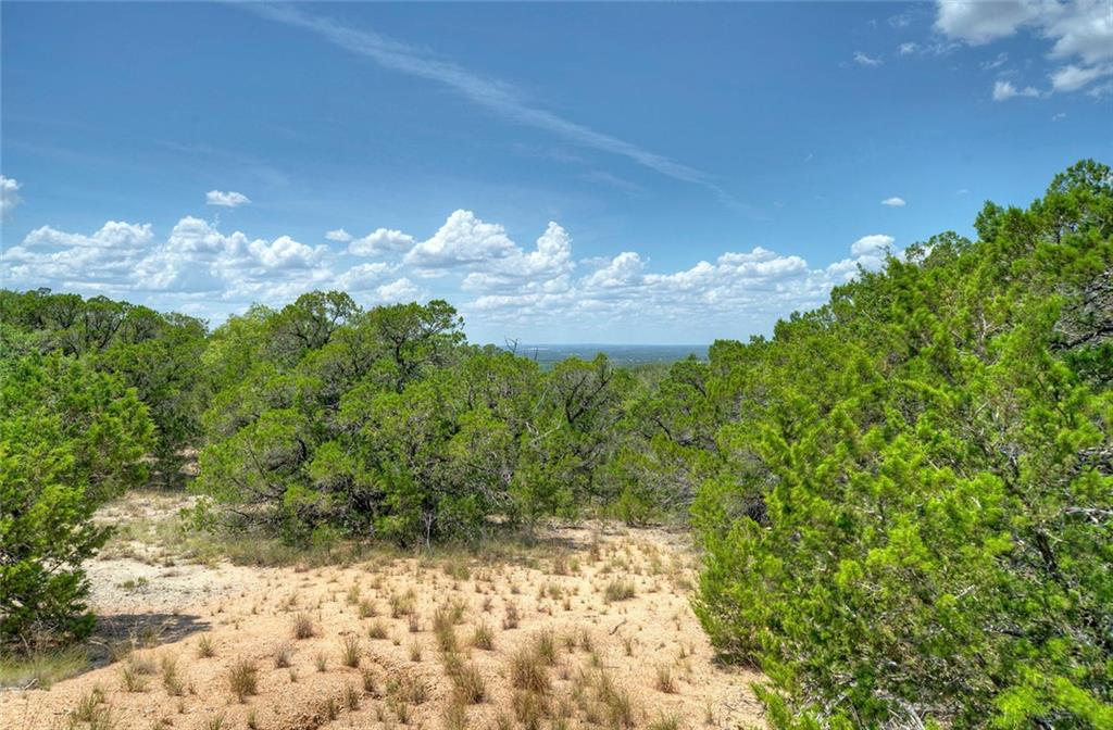 Big Texas sky and rolling Hill Country views are waiting for you on this rugged 11.5 acres. Multiple building sites. The property is just up the road from the Turkey Bend recreation area and the Balcones Canyonlands National Wildlife Refuge. Wear your boots and use caution when walking the property. No improvements, no HOA, minimal restrictions! Marble Falls Independent School District.