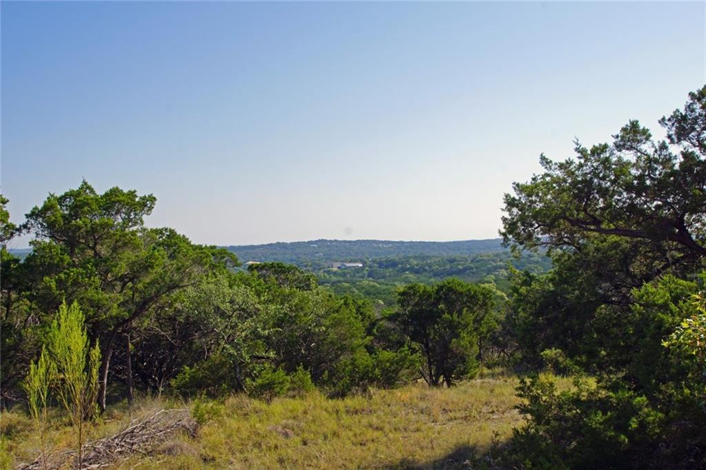 33+ UNRESTRICTED acres with numerous build sites, abundant wildlife and amazing hill country views! Attractive sloping topo with 120' of elev. change. Limestone bottom, wet weather creeks traverse the property. Scattered oaks and cedar tree coverage with caliche soil. Only 5 minutes to Hwy 290. Property in Travis/Hays Counties and Austin/Dripping Springs ETJ buy is primarily in Hays and Dripping Springs ETJ. Perfect as a private estate or development potential with phenomenal view lots. 60' wide easement road access from Fitzhugh to the property. PEC power at front of property. No zoning. Neighboring wells are around 800' and produce 10 to 60 gpm. The aquifer is the Trinity. Jester King Holdings is the adjacent land owner to the west. Dripping Springs ISD.