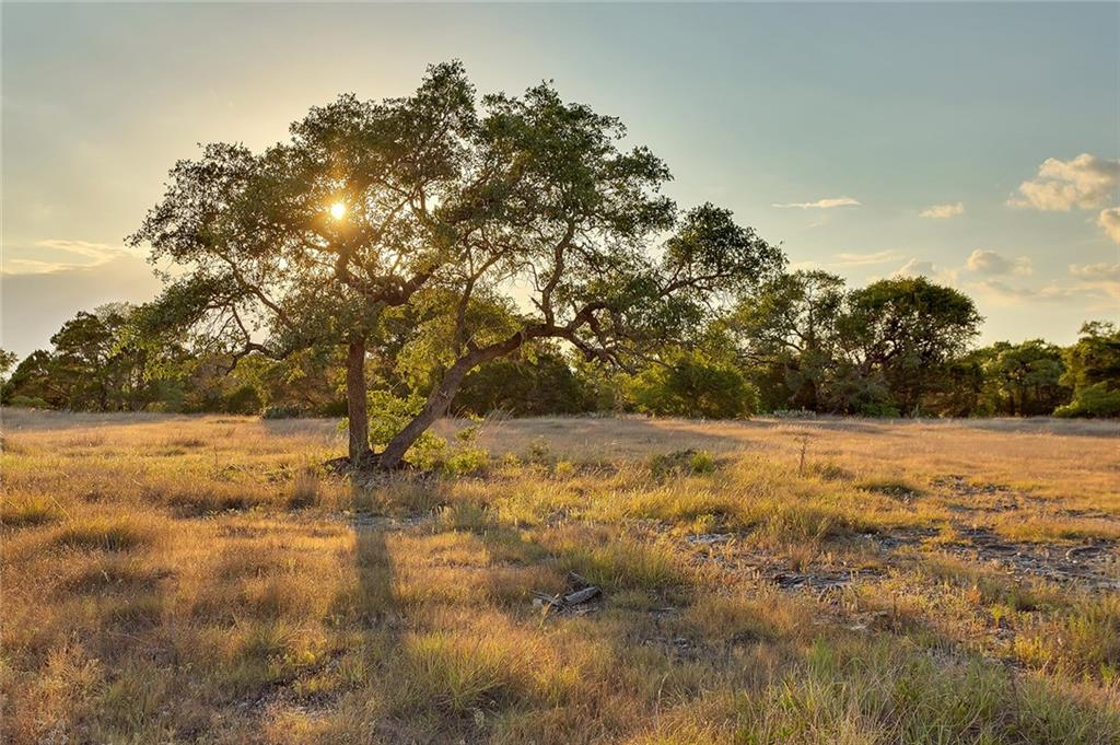 Liberty Ranch is a one of a kind opportunity to own your own piece of the Texas Hill Country. Just 20 miles from downtown Austin and adjacent to over 20,000 acres of pristine Hill Country land that will never be developed. Windswept oaks and rolling pastures grace the terrain. Perfect for a refuge from the bustle of Austin, as a primary residence, a vacation home or just some land on which to escape. This listing is for Ranch #3 but others are available in the development, contact agent for more details.Restrictions: Yes