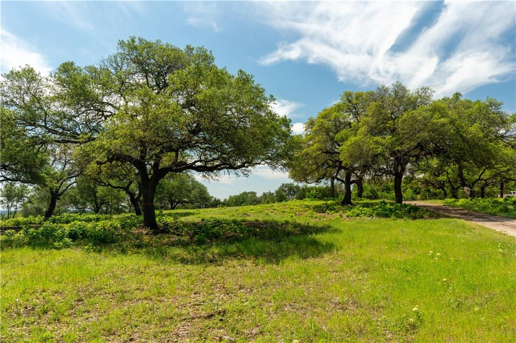 Liberty Ranch is a one of a kind opportunity to own your own piece of the Texas Hill Country. Just 20 miles from downtown Austin and adjacent to over 15,000 acres of pristine Hill Country land that will never be developed. Windswept oaks and rolling pastures grace the terrain. Perfect for a refuge from the bustle of Austin, as a primary residence, a vacation home or just some land on which to escape. This listing is for Ranch 14 but other parcels are available, contact broker for more info.Restrictions: Yes