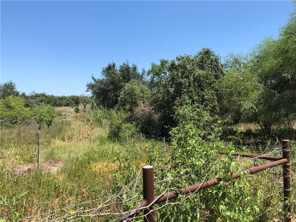 50+/- acres in Smiley/Westhoff/Nixon area, County Rd access, it was a homestead many years ago, very rural area escape neighbors, or just get away for weekenders. Ranches surround you.