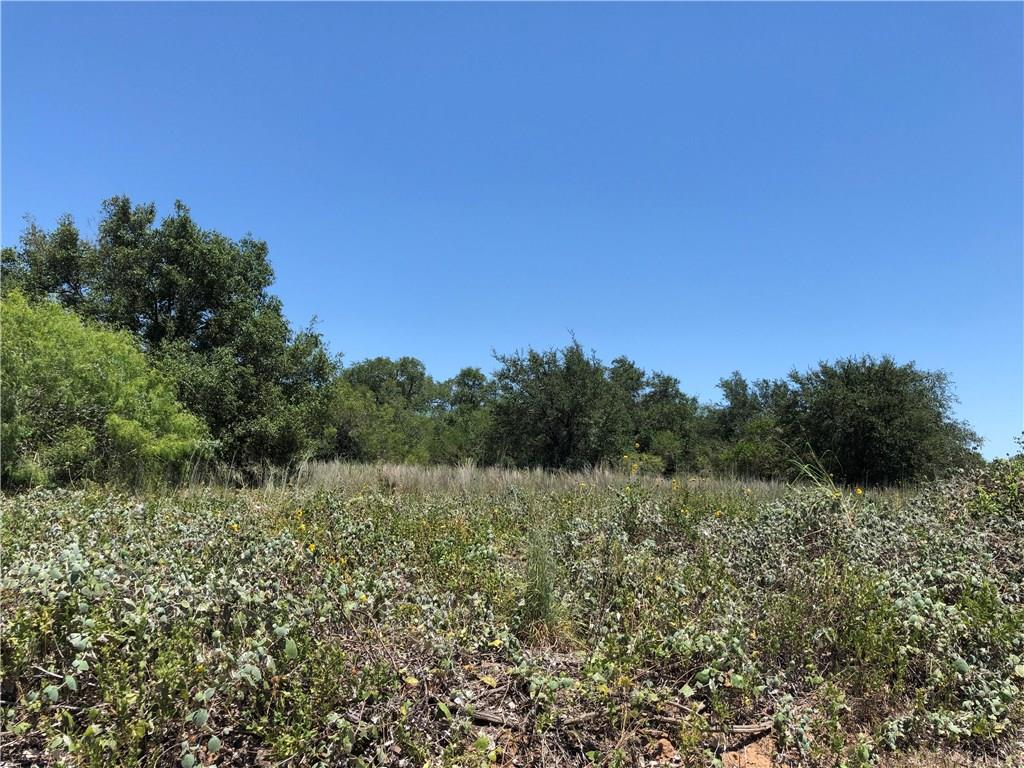 OFF THE GRID Rural 32.2 acres, surrounded by similar sized and larger ranches. Property has been unused for many years, occasional deer leases have been granted. Well needed, Electric available, or solar. Good grazing or hunting.