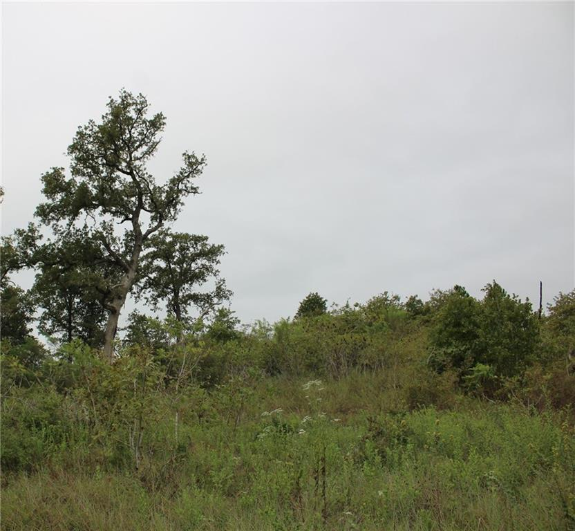 You found your piece of heaven with this wooded 15.6 acres. Enjoy a wildlife exemption and a very low tax rate wile you wake up to beautiful pines and abundance of wildlife. Property is a four mile drive into the sleepy vintage town of Smithville and an eight mile drive to the growing city of Bastrop.  More than one good building site can be located on the property for you to build your dream home. You will see deer and many native flowers and grasses.Restrictions: Yes