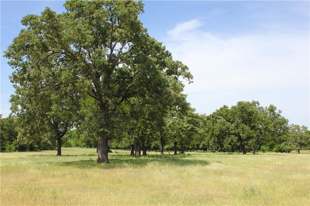 Approximately 5 miles from Rockdale, off of Hwy. 77 and down quiet CR 313 in Milam County.