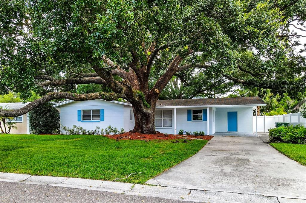 4503 S RENELLIE DRIVE, TAMPA FL 33611
