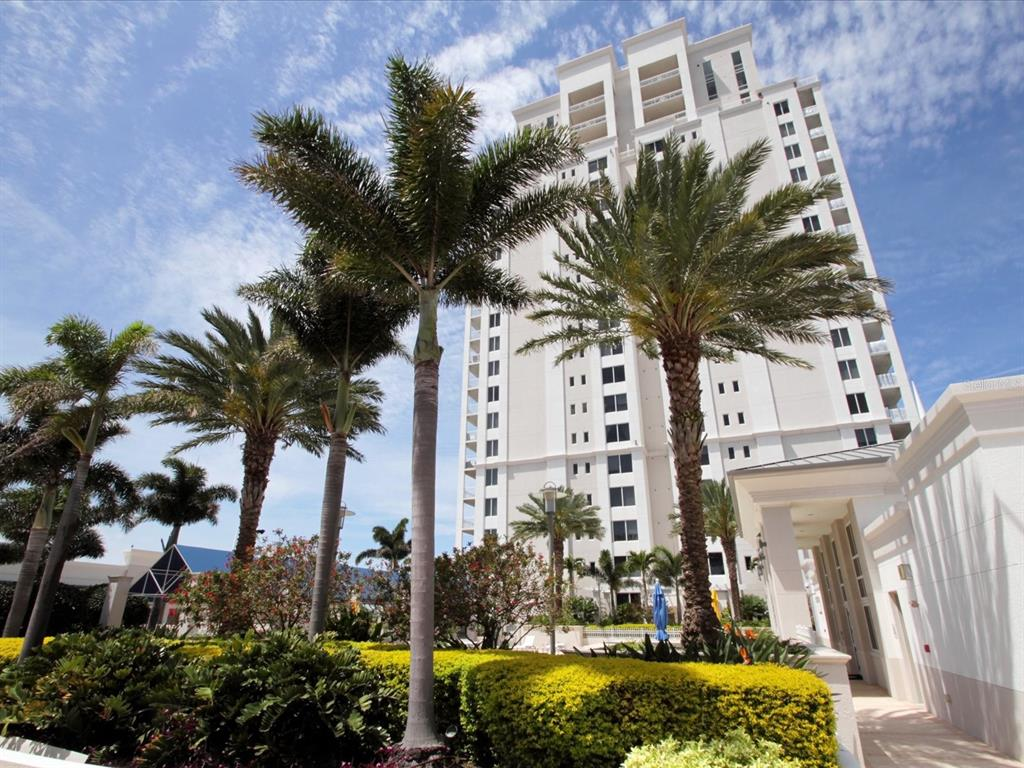 331 CLEVELAND STREET # 704, CLEARWATER FL 33755