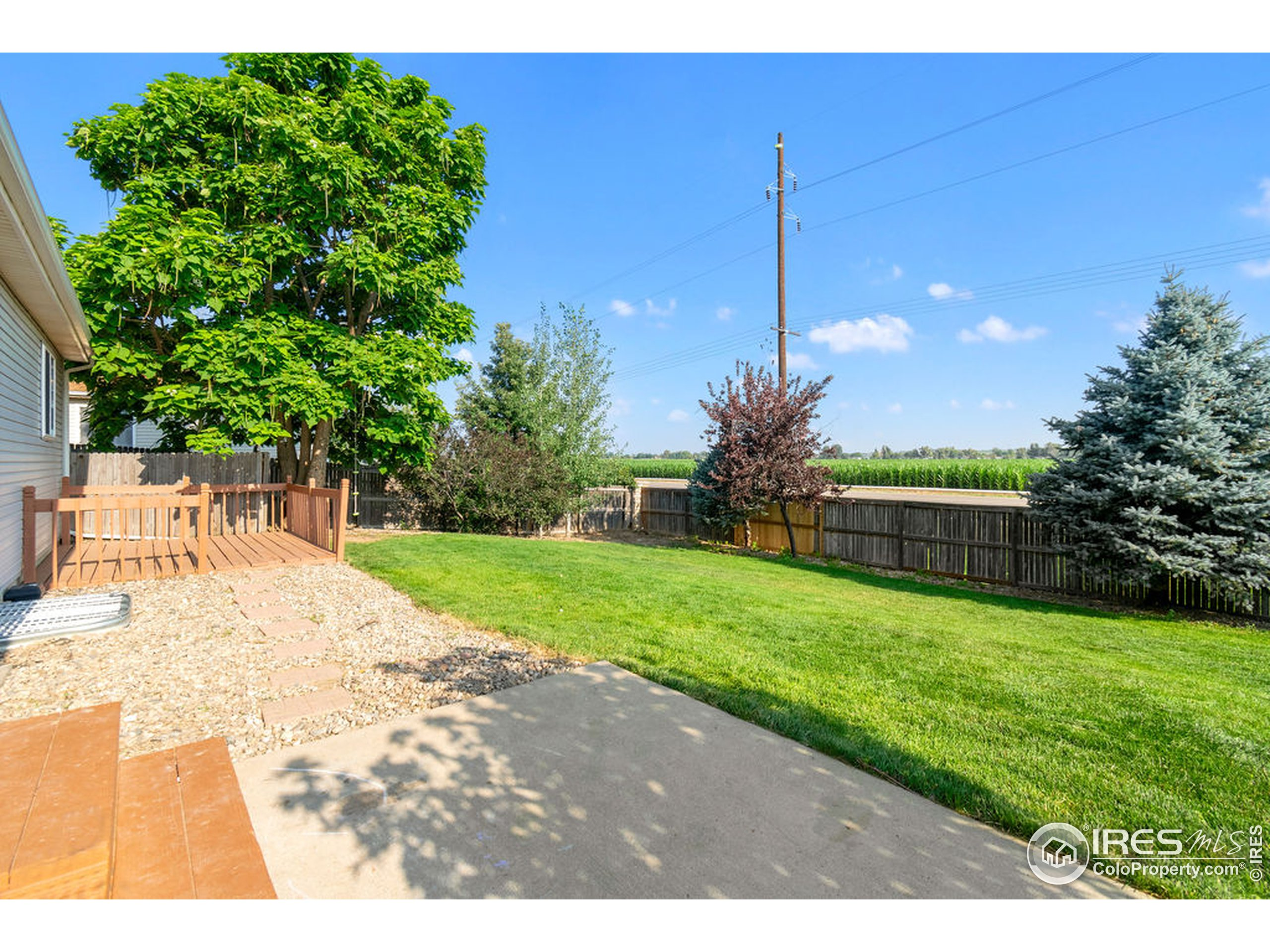 Large Backyard with Mature Landscaping