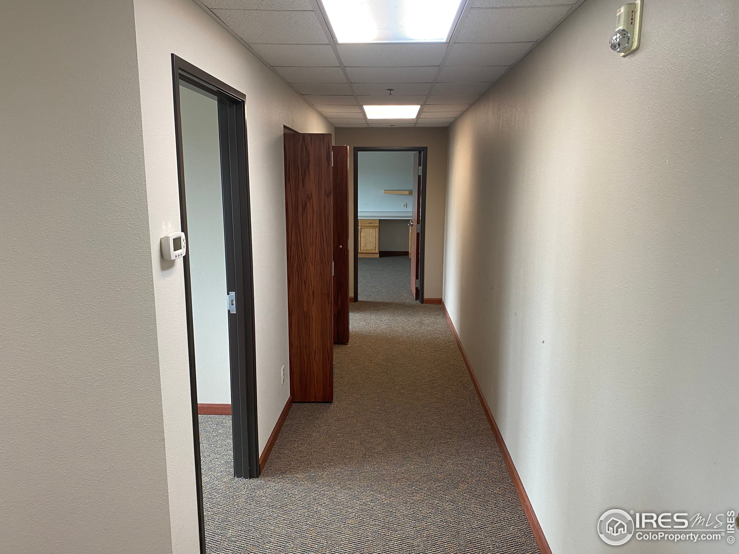 Hall to private offices