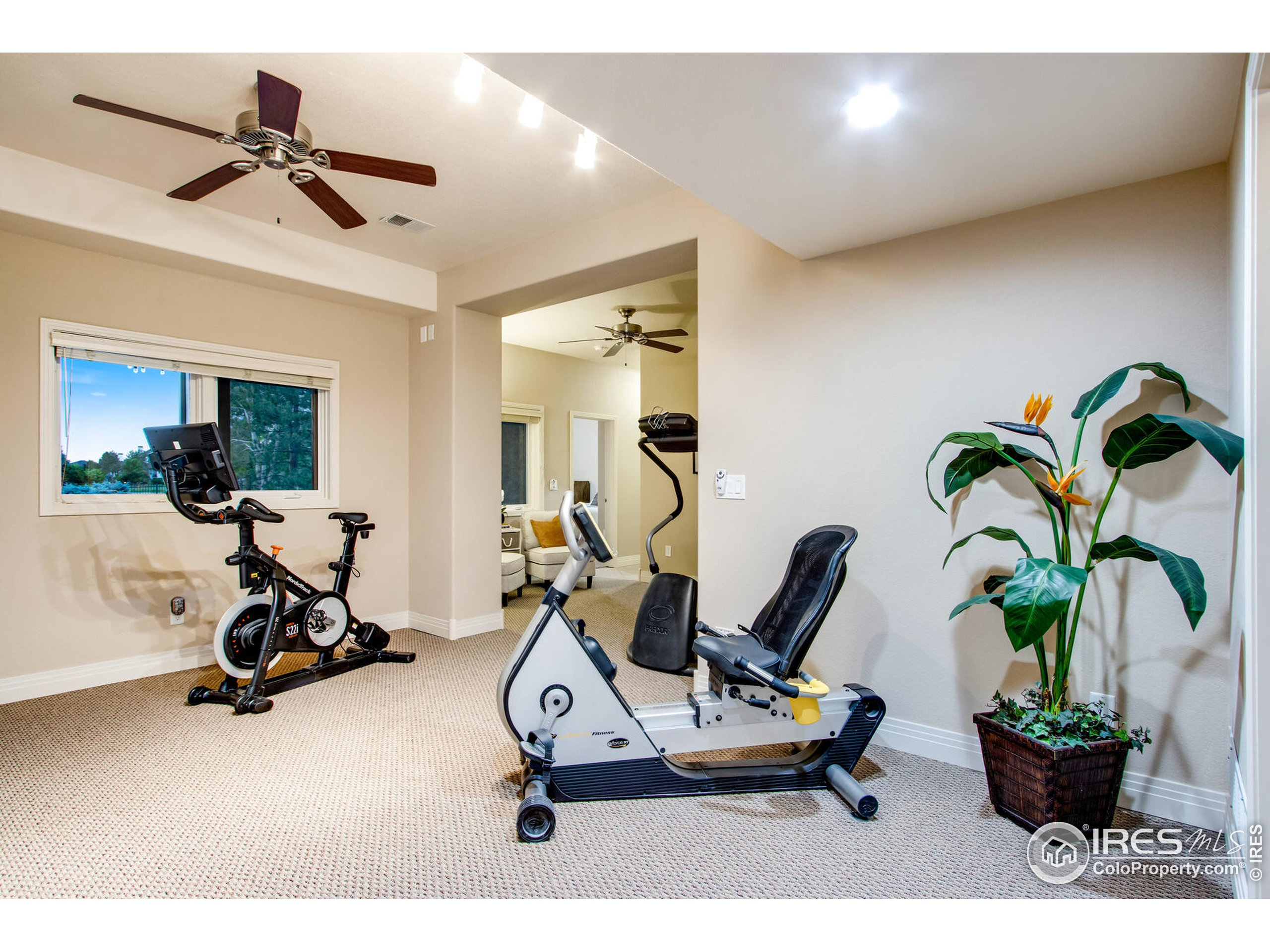 Flex Room - Yoga/Exercise, Playroom, Music Room or quite Sitting/Reading Room