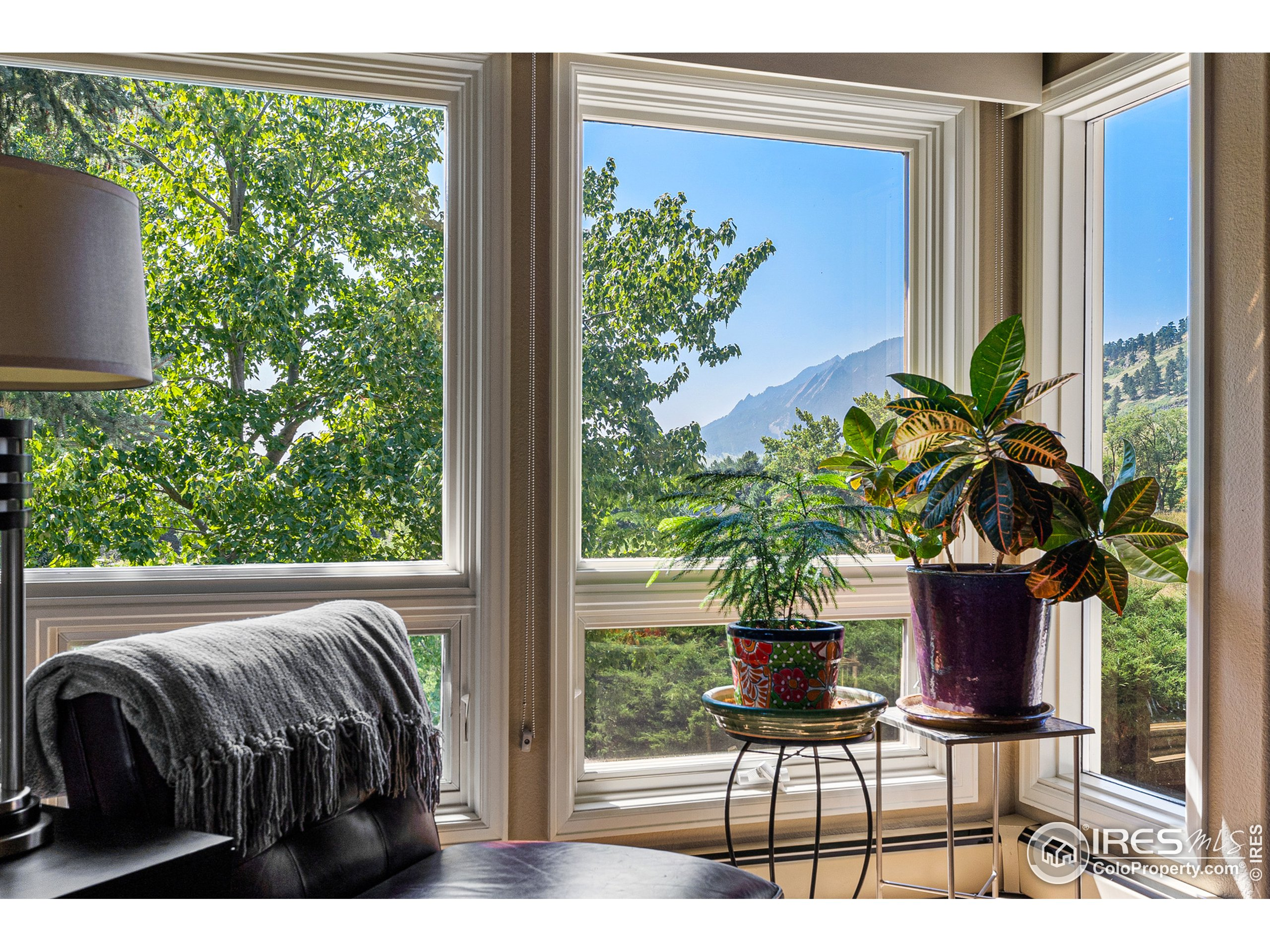 Mountain views from the living room windows