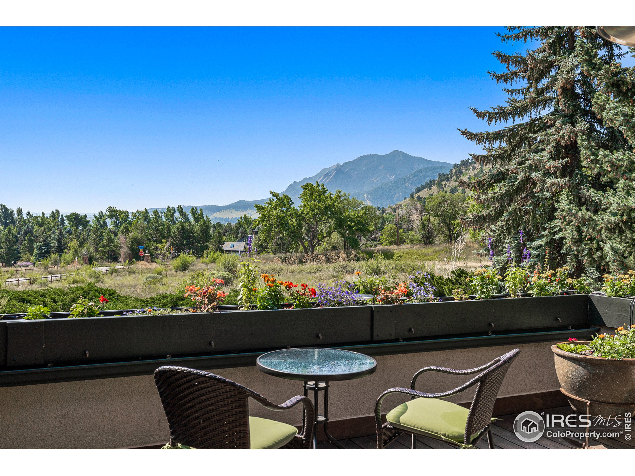 unobstructed mountain views